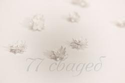 10407 Цветы для прически с липучкой серебряные, 10 шт.